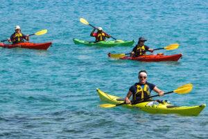 kayak beginners