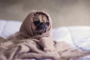 monday morning sad face